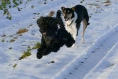 ..... gab es viel Spaß im Schnee .....