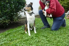 und Rudi lebt nun in unserer Nähe  mit Oscar zusammen :-)