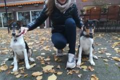 .... Abby (l) & Leyla (r)
